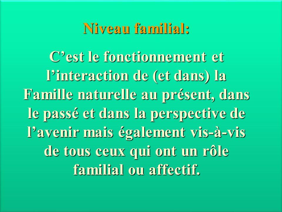 Niveau familial: C'est le fonctionnement et l'interaction de (et dans) la Famille naturelle au présent, dans le passé et dans la perspective de l'aven