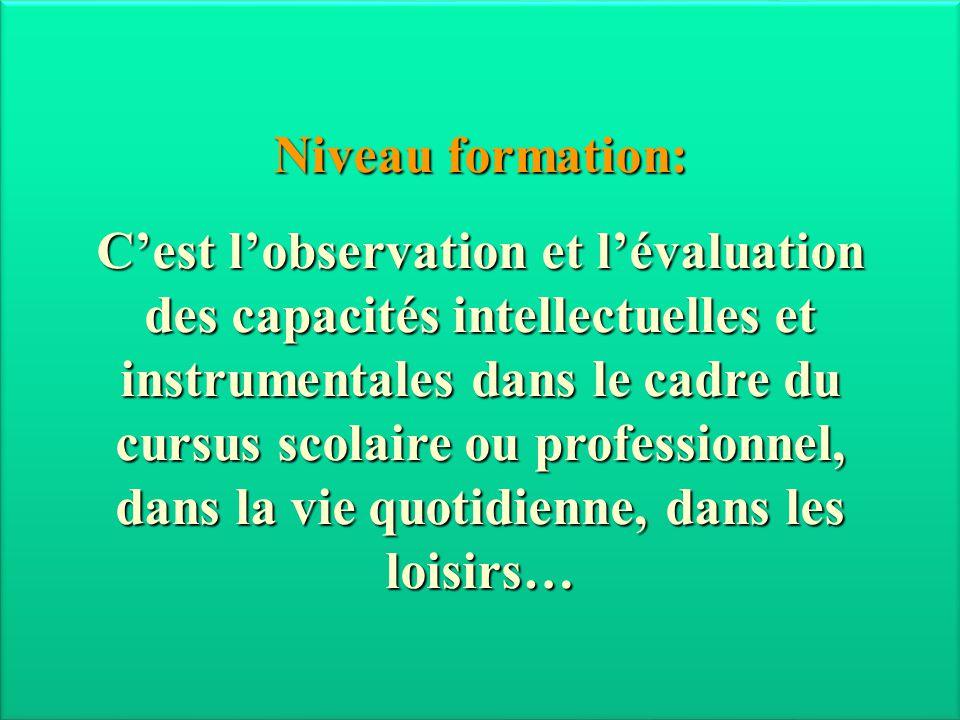 Niveau formation: C'est l'observation et l'évaluation des capacités intellectuelles et instrumentales dans le cadre du cursus scolaire ou professionne