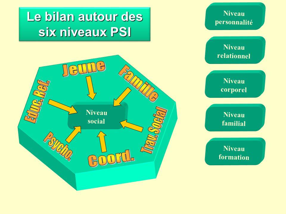Le bilan autour des six niveaux PSI Niveau familial Niveau corporel Niveau formation Niveau social Niveau relationnel Niveau personnalité