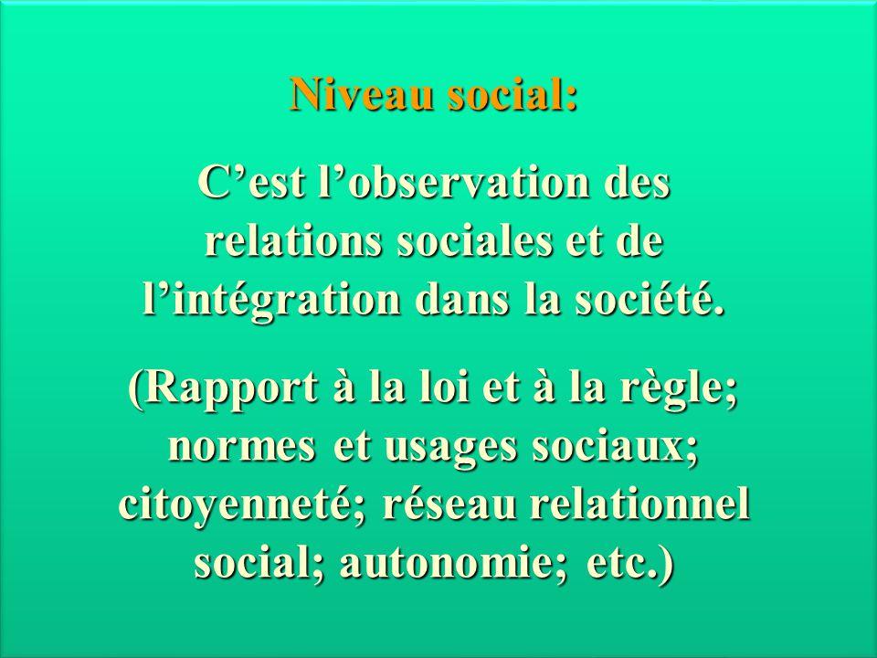 Niveau social: C'est l'observation des relations sociales et de l'intégration dans la société. (Rapport à la loi et à la règle; normes et usages socia