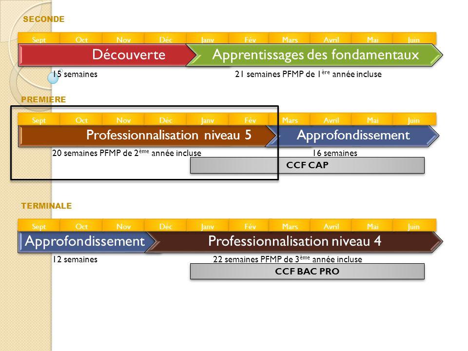 Professionnalisation niveau 5 Objectifs : •Conduire au moins un projet de réalisation : activités d'analyse, de préparation et de fabrication.