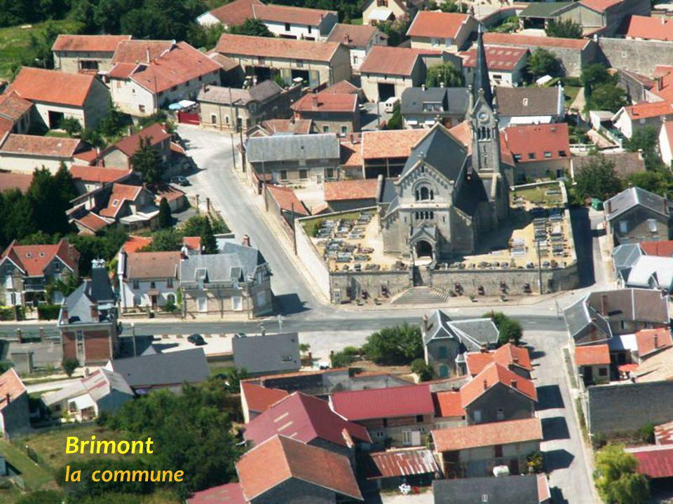 Le village de la montagne de Reims Le moulin, montagne de Reims, le vignoble de Champagne V e r z e n a y