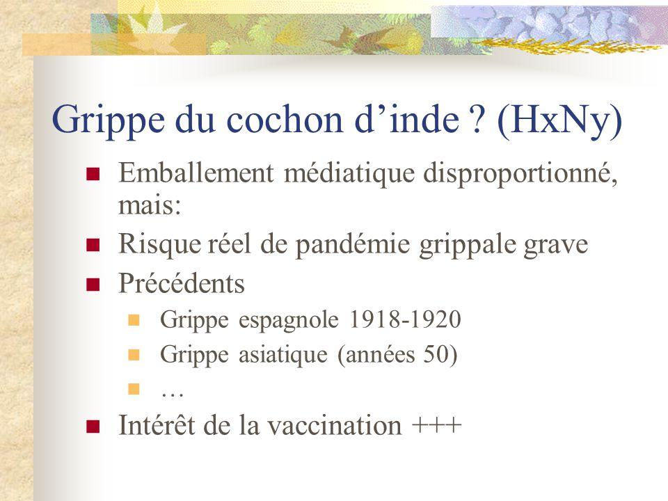 Grippe du cochon d'inde ? (HxNy)  Emballement médiatique disproportionné, mais:  Risque réel de pandémie grippale grave  Précédents  Grippe espagn