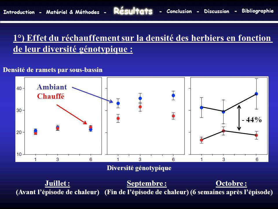 Densité de ramets par sous-bassin Diversité génotypique 1°) Effet du réchauffement sur la densité des herbiers en fonction de leur diversité génotypiq