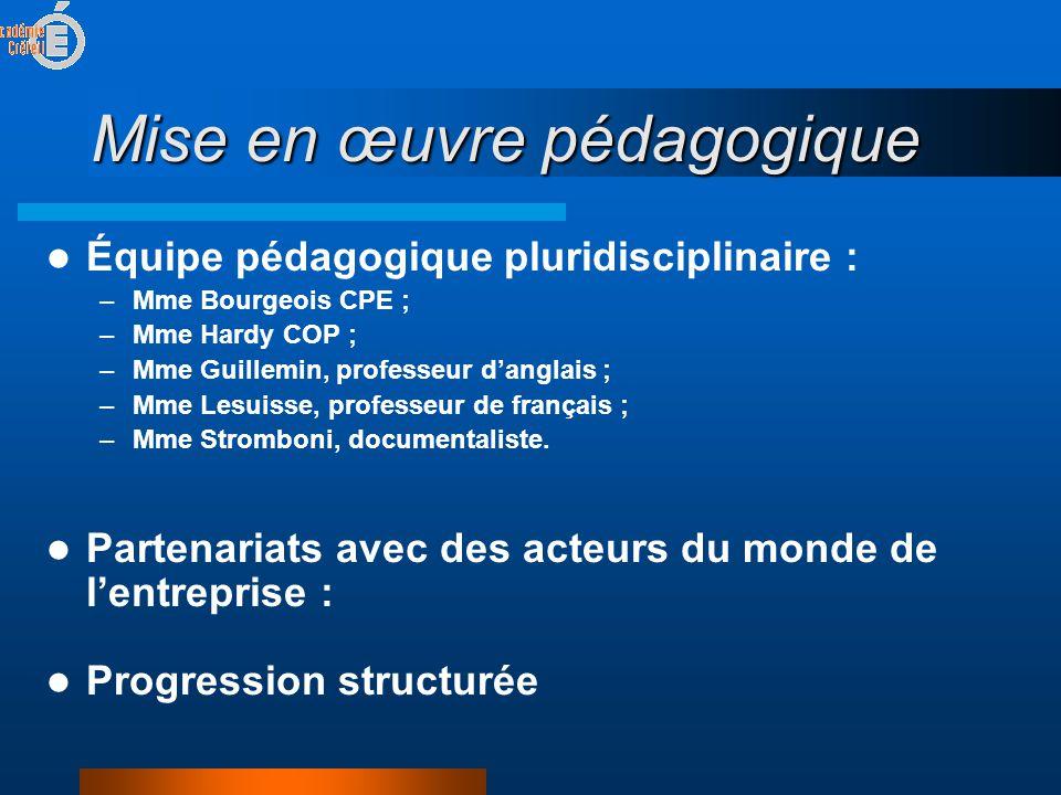 Mise en œuvre pédagogique  Équipe pédagogique pluridisciplinaire : –Mme Bourgeois CPE ; –Mme Hardy COP ; –Mme Guillemin, professeur d'anglais ; –Mme Lesuisse, professeur de français ; –Mme Stromboni, documentaliste.