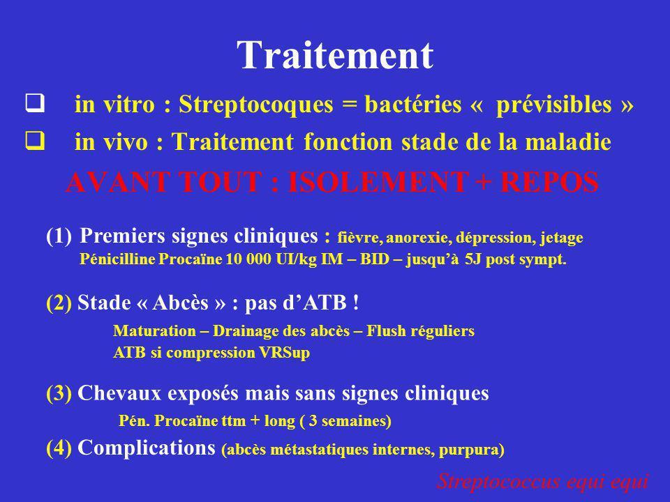 Traitement  in vitro : Streptocoques = bactéries « prévisibles »  in vivo : Traitement fonction stade de la maladie AVANT TOUT : ISOLEMENT + REPOS S