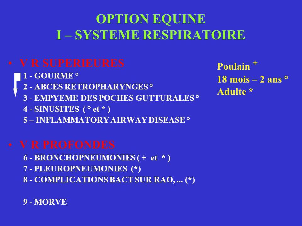 OPTION EQUINE I – SYSTEME RESPIRATOIRE •V R SUPERIEURES 1 - GOURME ° 2 - ABCES RETROPHARYNGES ° 3 - EMPYEME DES POCHES GUTTURALES ° 4 - SINUSITES ( °