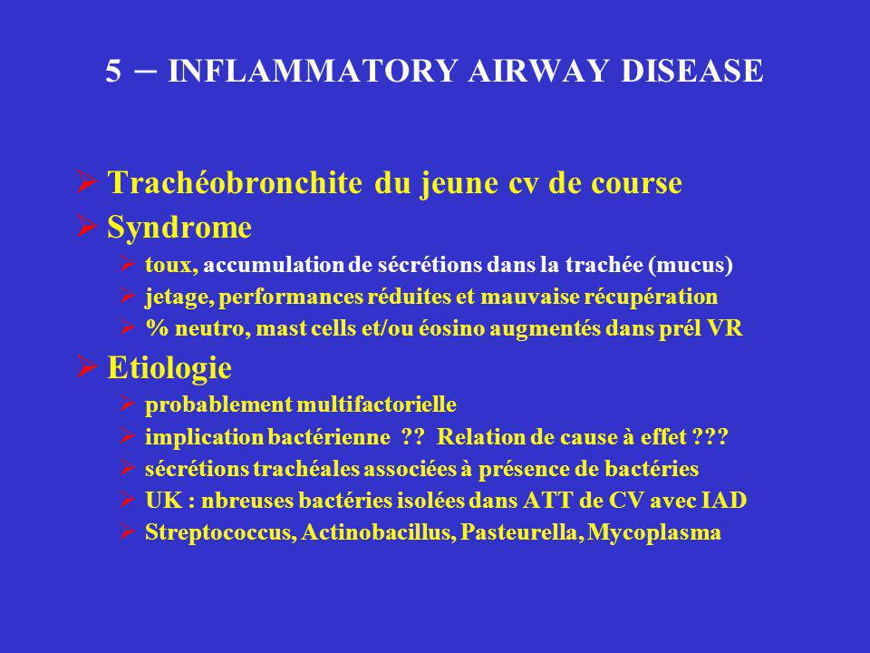 5 – INFLAMMATORY AIRWAY DISEASE  Trachéobronchite du jeune cv de course  Syndrome  toux, accumulation de sécrétions dans la trachée (mucus)  jetag