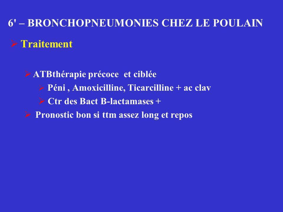 6' – BRONCHOPNEUMONIES CHEZ LE POULAIN  Traitement  ATBthérapie précoce et ciblée  Péni, Amoxicilline, Ticarcilline + ac clav  Ctr des Bact B-lact