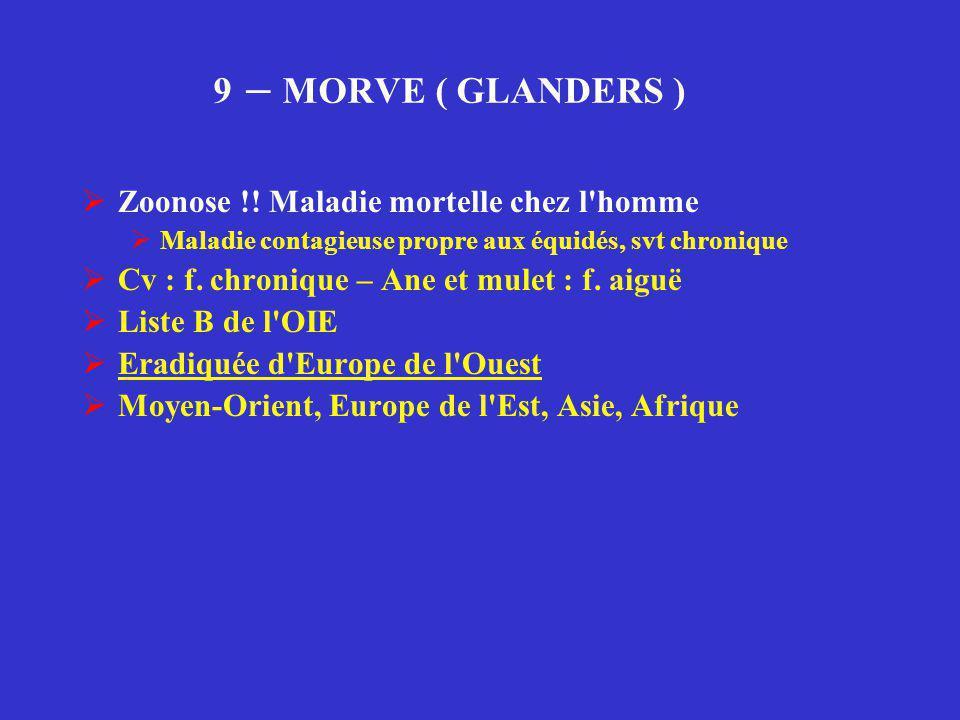 9 – MORVE ( GLANDERS )  Zoonose !! Maladie mortelle chez l'homme  Maladie contagieuse propre aux équidés, svt chronique  Cv : f. chronique – Ane et