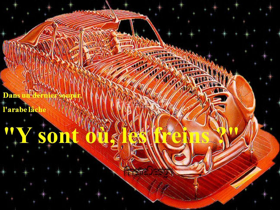 Raoul répond Mais oui je connais, bordel de merde, je connais Peugeot ! .