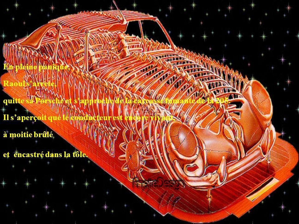 En pleine panique, Raoul s arrete, quitte sa Porsche et s approche de la carcasse fumante de la 205.