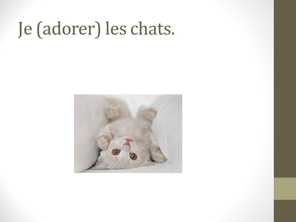 Je (adorer) les chats.