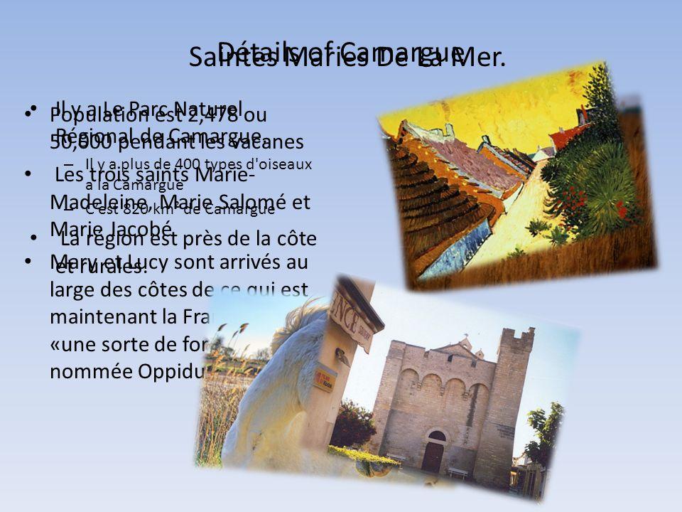 Détails of Camargue • Il y a Le Parc Naturel Régional de Camargue.
