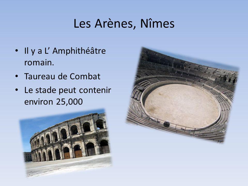 Les Arènes, Nîmes • Il y a L' Amphithéâtre romain. • Taureau de Combat • Le stade peut contenir environ 25,000