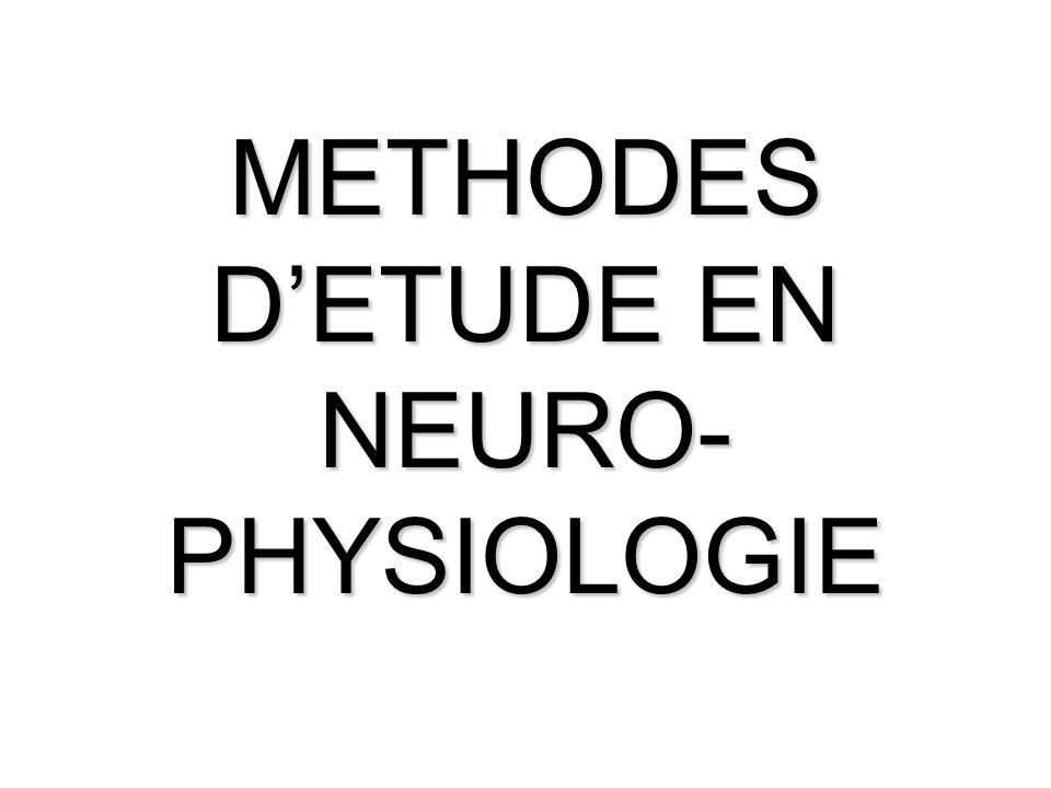 METHODES D'ETUDE EN NEURO- PHYSIOLOGIE