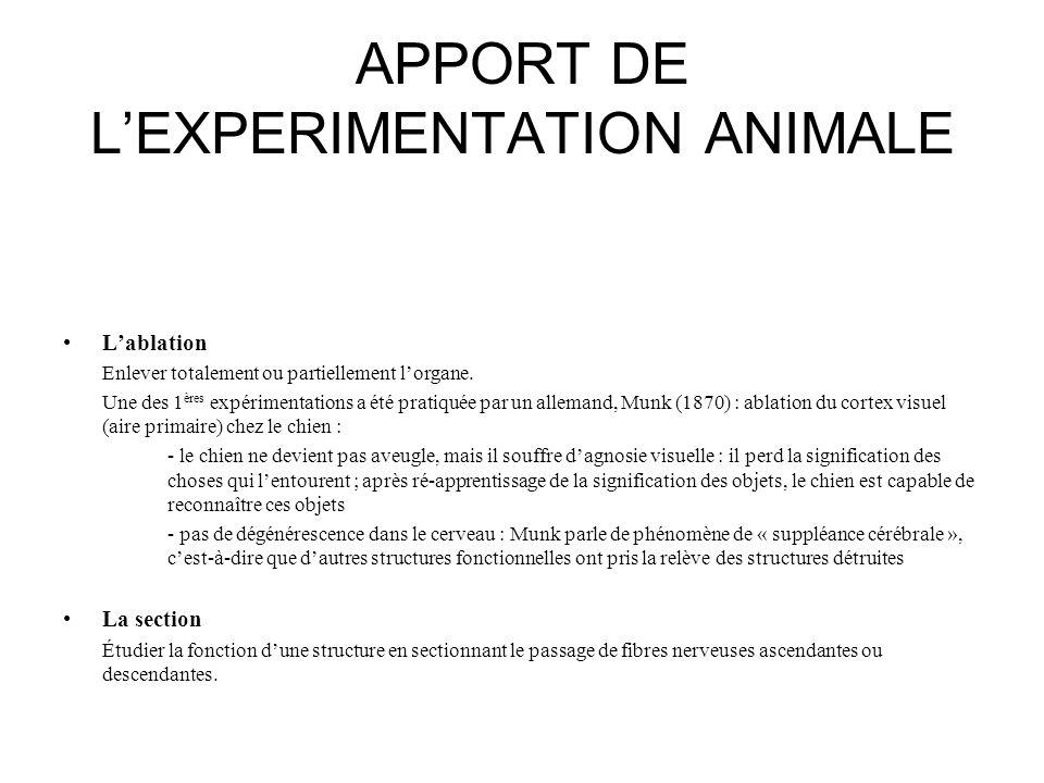 APPORT DE L'EXPERIMENTATION ANIMALE •L'ablation Enlever totalement ou partiellement l'organe. Une des 1 ères expérimentations a été pratiquée par un a