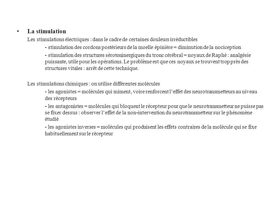METHODES D'ETUDES ACTUELLES •L'I.R.M.