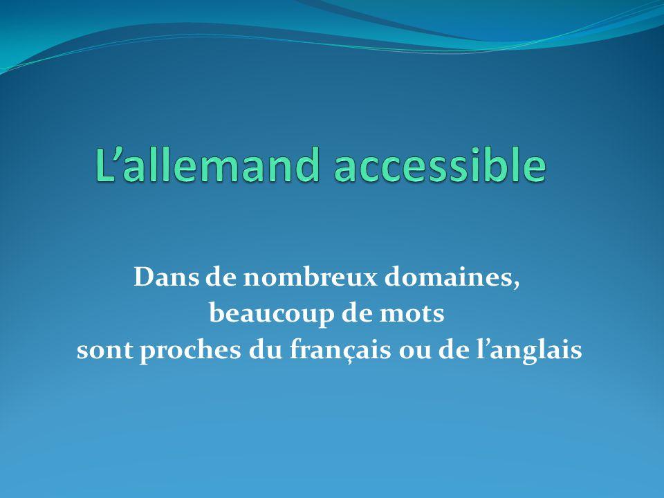 Dans de nombreux domaines, beaucoup de mots sont proches du français ou de l'anglais