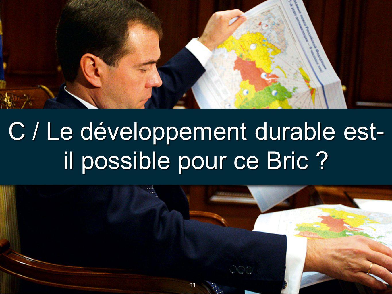 11 C / Le développement durable est- il possible pour ce Bric ?