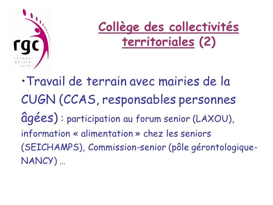 Collège des collectivités territoriales (2) •Travail de terrain avec mairies de la CUGN (CCAS, responsables personnes âgées) : participation au forum