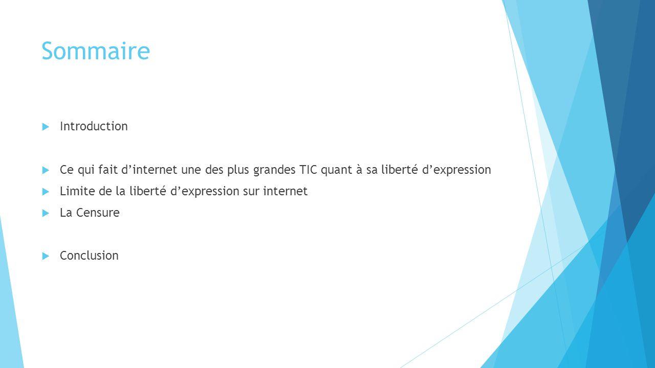 Sommaire  Introduction  Ce qui fait d'internet une des plus grandes TIC quant à sa liberté d'expression  Limite de la liberté d'expression sur inte