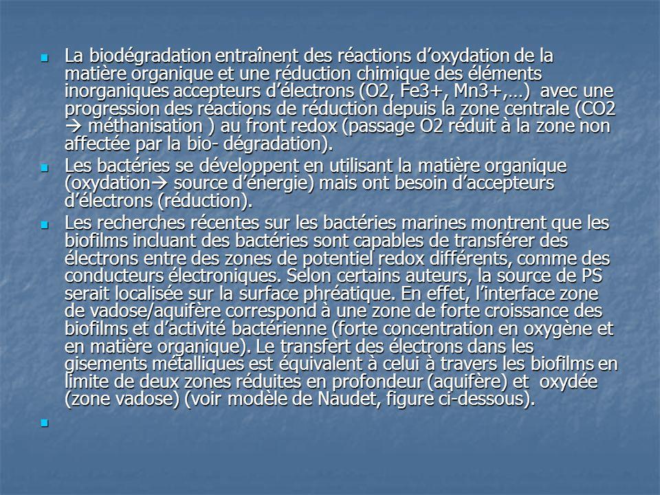  La biodégradation entraînent des réactions d'oxydation de la matière organique et une réduction chimique des éléments inorganiques accepteurs d'élec