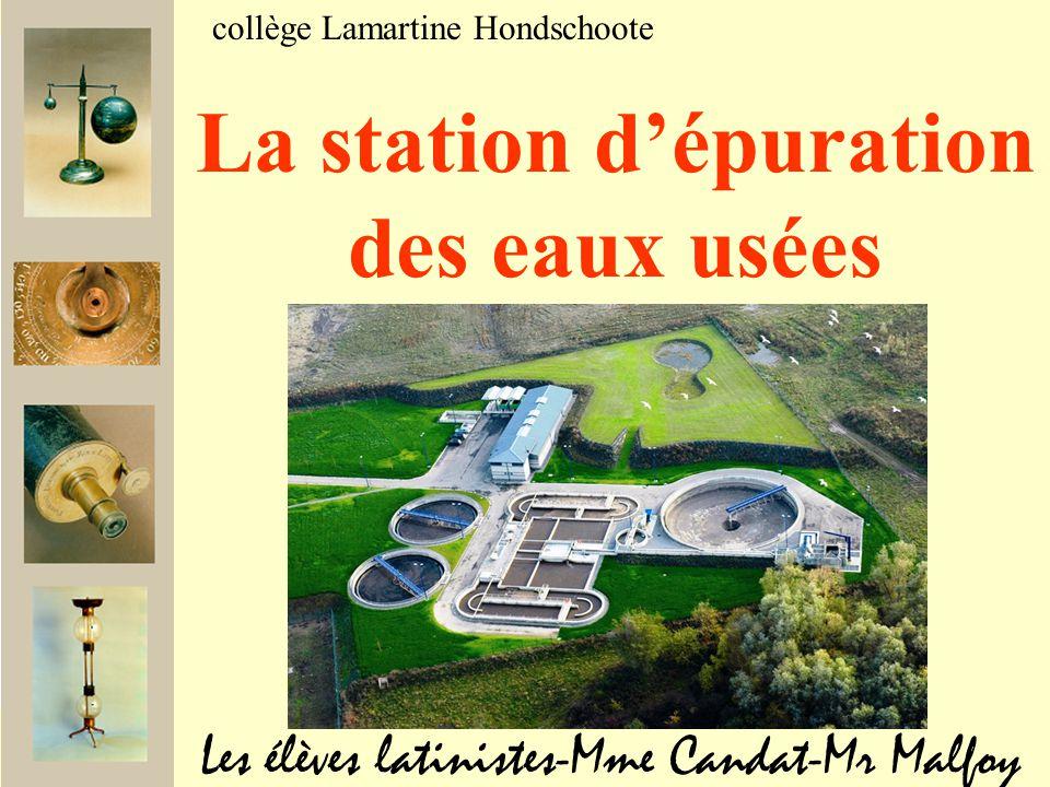 Les élèves latinistes-Mme Candat-Mr Malfoy collège Lamartine Hondschoote La station d'épuration des eaux usées