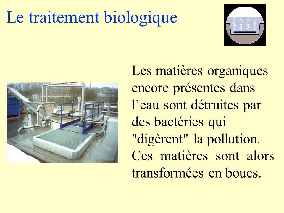 Le traitement biologique Les matières organiques encore présentes dans l'eau sont détruites par des bactéries qui digèrent la pollution.