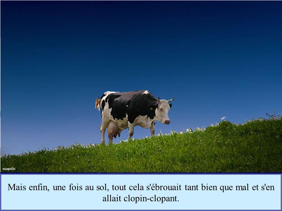Évidemment, il y avait bien quelques problèmes techniques, le mot vache, par exemple, avait bien du mal à tomber au sol comme un duvet gracieux...