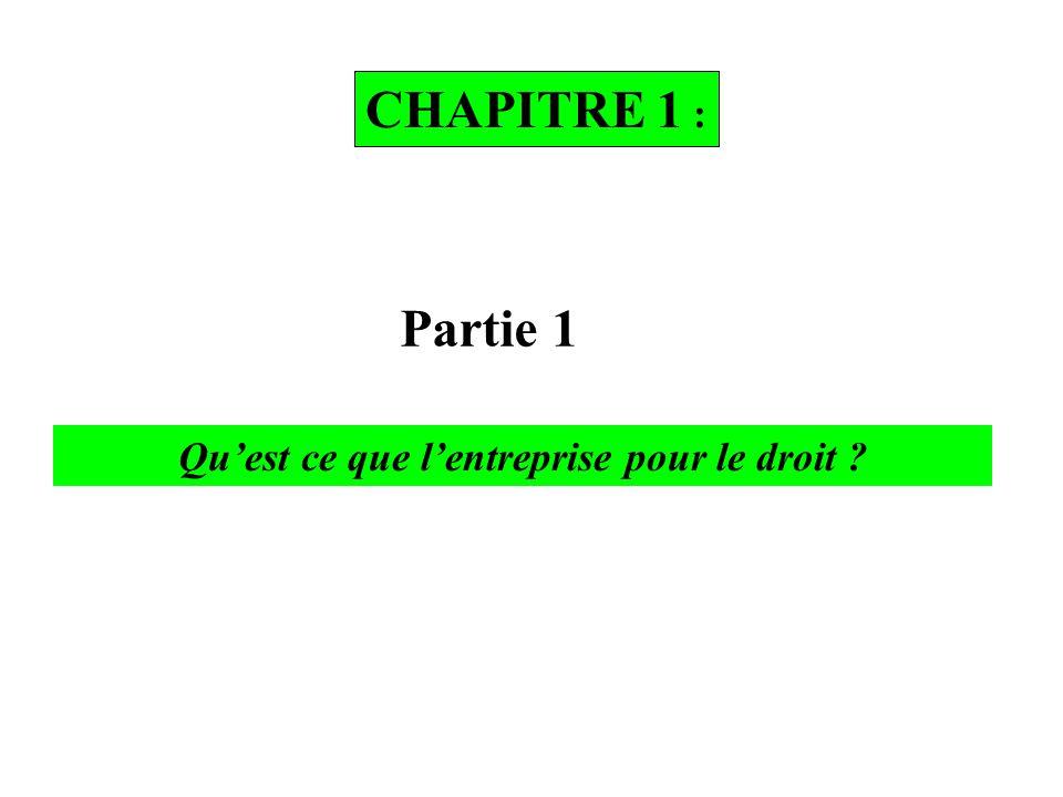 CHAPITRE 1 : Partie 1 Qu'est ce que l'entreprise pour le droit ?