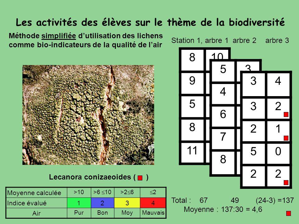 Lecanora conizaeoides ( ) Méthode simplifiée d'utilisation des lichens comme bio-indicateurs de la qualité de l'air 810 92 51 83 1110 53 44 65 74 83 S