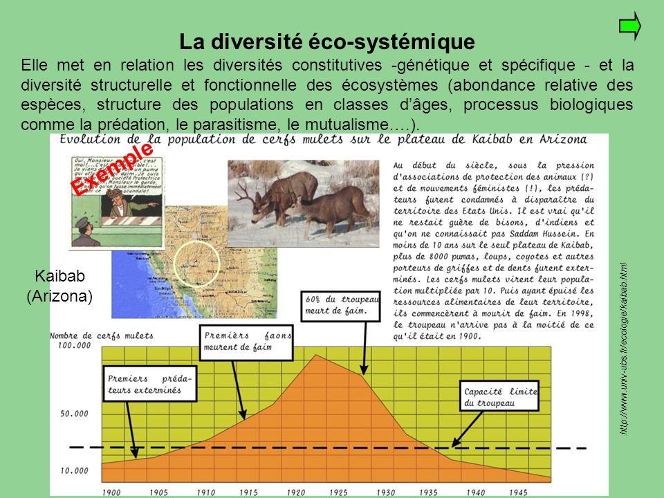 http://www.univ-ubs.fr/ecologie/kaibab.html La diversité éco-systémique Elle met en relation les diversités constitutives -génétique et spécifique - e