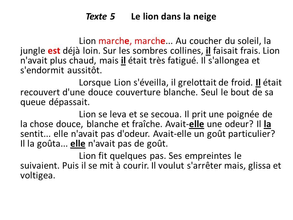 Texte 5 Le lion dans la neige Lion marche, marche... Au coucher du soleil, la jungle est déjà loin. Sur les sombres collines, il faisait frais. Lion n