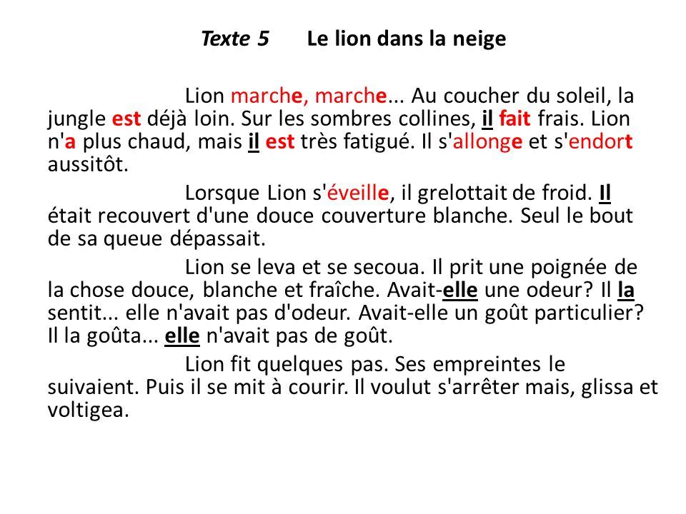 Texte 5 Le lion dans la neige Lion marche, marche... Au coucher du soleil, la jungle est déjà loin. Sur les sombres collines, il fait frais. Lion n'a