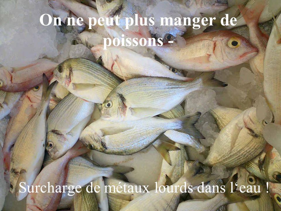 On ne peut plus manger de poissons - Surcharge de métaux lourds dans l'eau !