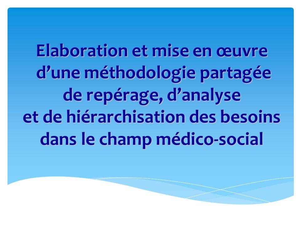 Elaboration et mise en œuvre d'une méthodologie partagée de repérage, d'analyse et de hiérarchisation des besoins dans le champ médico-social