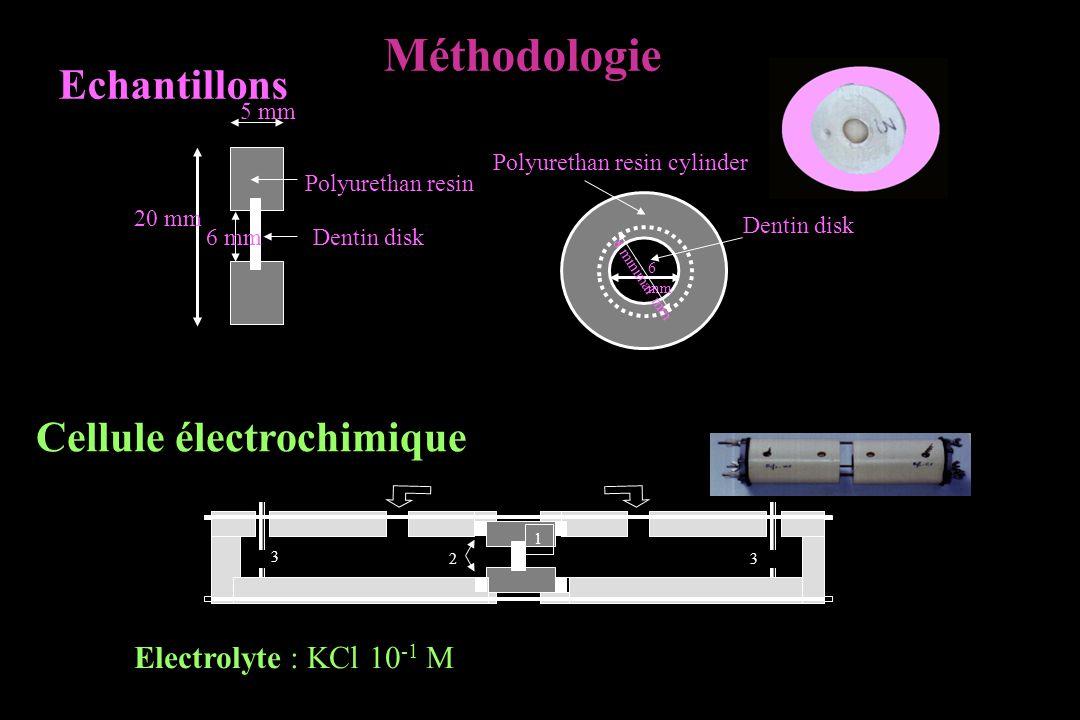 20 mm 5 mm 6 mmDentin disk Polyurethan resin Polyurethan resin cylinder 6 mm Dentin disk 8 minimal mm Echantillons Cellule électrochimique 1 2 KCl 3 3 Electrolyte : KCl 10 -1 M Méthodologie