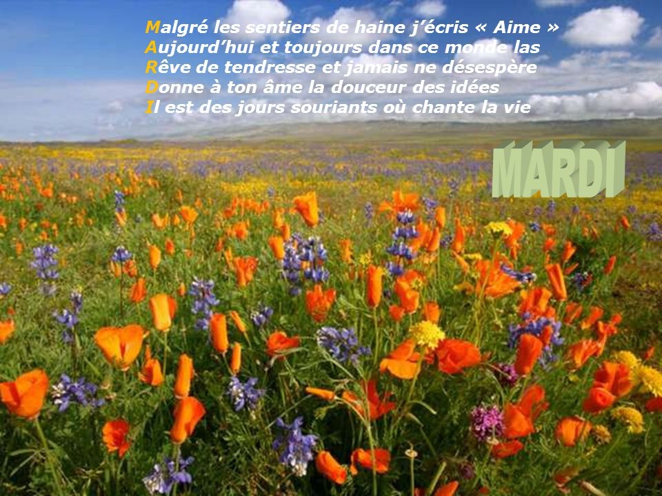 Dieu sur son nuage bleu rêvait d'un monde Illustré de fleurs, parsemé de cœurs, la vie .