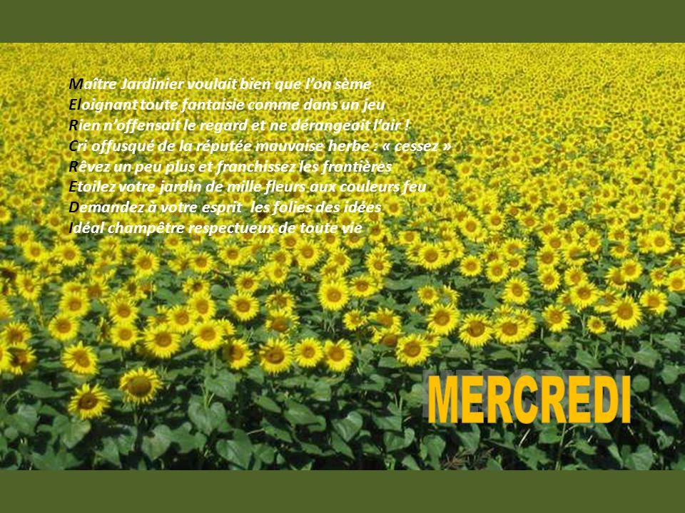 Pour que les résidents de la maison de retraite connaissent mieux MARTINE… (Son Amie : Gi ) Images du Web Poème de Martine Goblet : « La semaine chante les jours » http://www.ppsmania.fr/author/ginette/ http://www.regards.asso.fr/ginettebertorelle.html http://www.jackydubearn.fr/ginettebertorelle.html