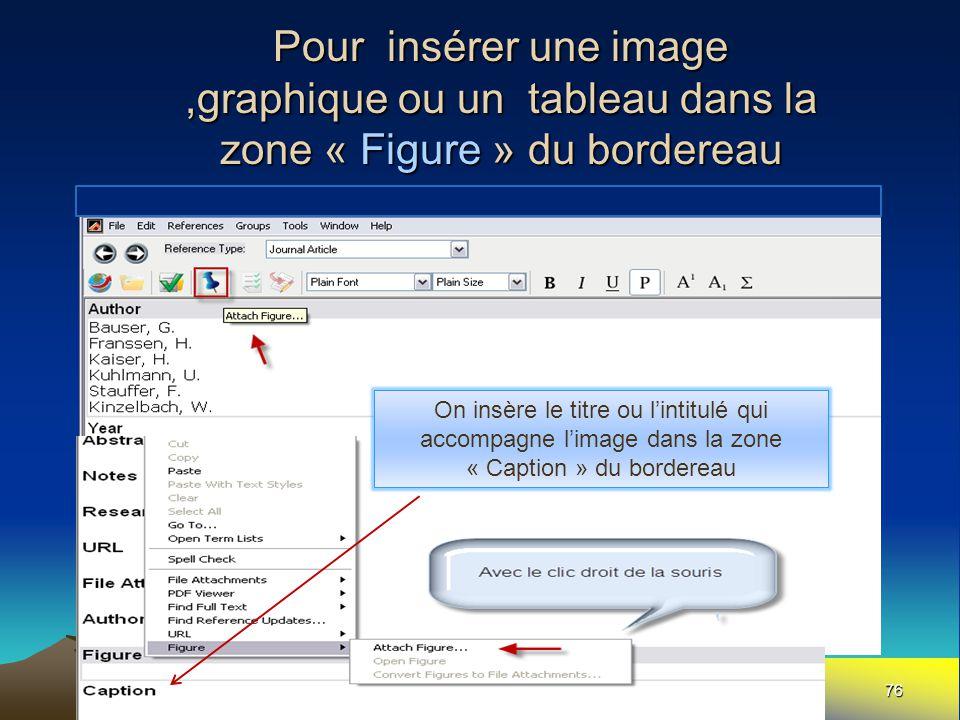 Pour insérer une image,graphique ou un tableau dans la zone « Figure » du bordereau 76 On insère le titre ou l'intitulé qui accompagne l'image dans la zone « Caption » du bordereau