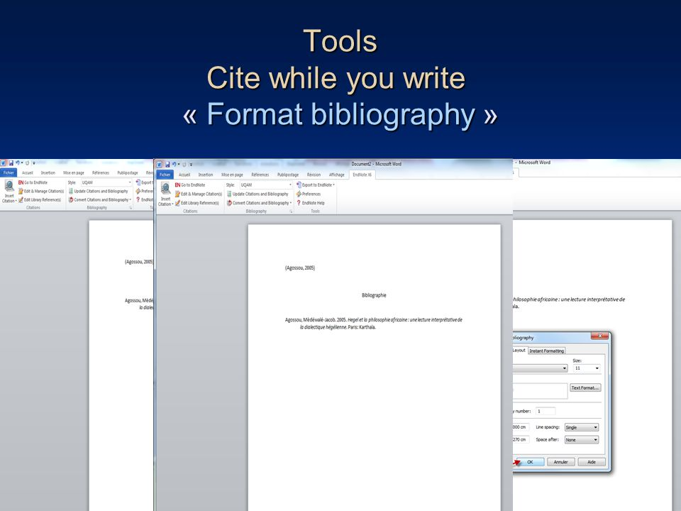84 Tools Cite while you write « Format bibliography »