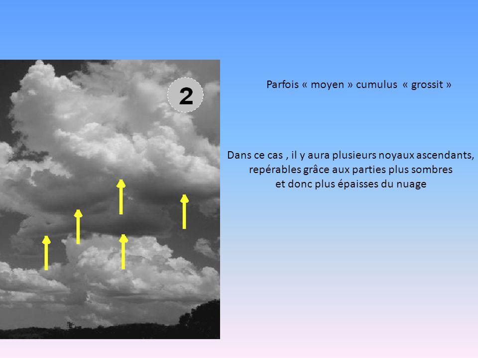 Parfois « moyen » cumulus « grossit » Dans ce cas, il y aura plusieurs noyaux ascendants, repérables grâce aux parties plus sombres et donc plus épaisses du nuage