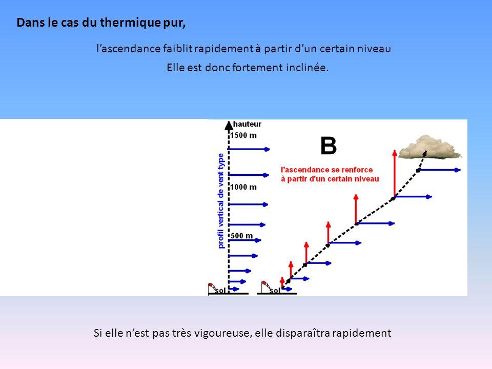 Dans le cas du thermique pur, l'ascendance faiblit rapidement à partir d'un certain niveau Elle est donc fortement inclinée.