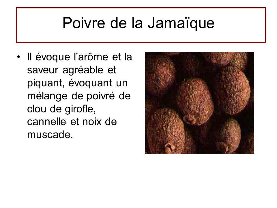 Poivre de la Jamaïque •Il évoque l'arôme et la saveur agréable et piquant, évoquant un mélange de poivré de clou de girofle, cannelle et noix de musca