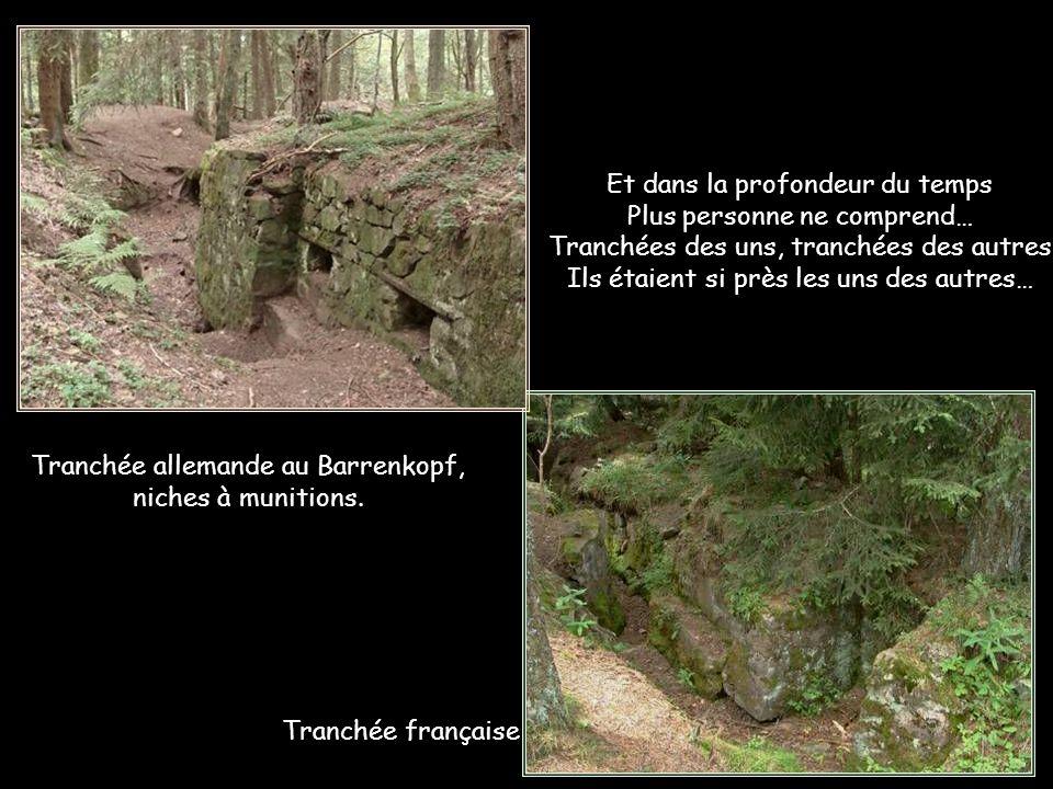 Il n'en garde pas moins des traces indélébiles… Tranchée allemande au Barrenkopf, escalier d'assaut.
