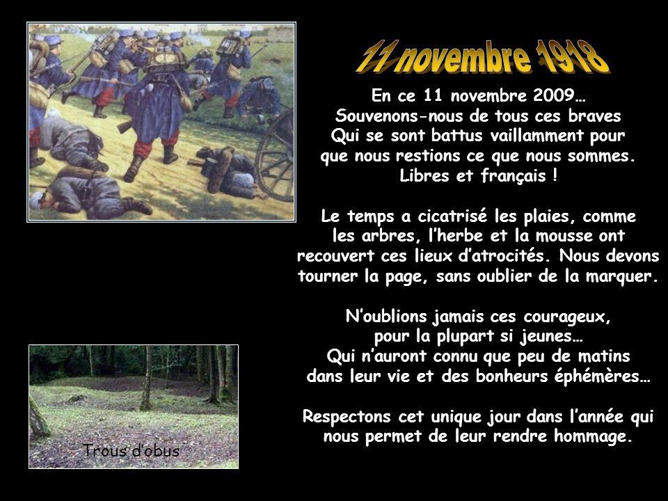 Le Bleuet de France était un symbole commémoratif de la Première Guerre mondiale