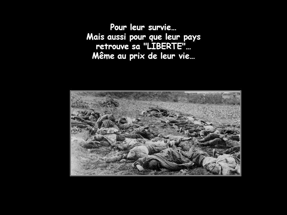 Pour leur survie… Mais aussi pour que leur pays retrouve sa LIBERTE … Même au prix de leur vie…
