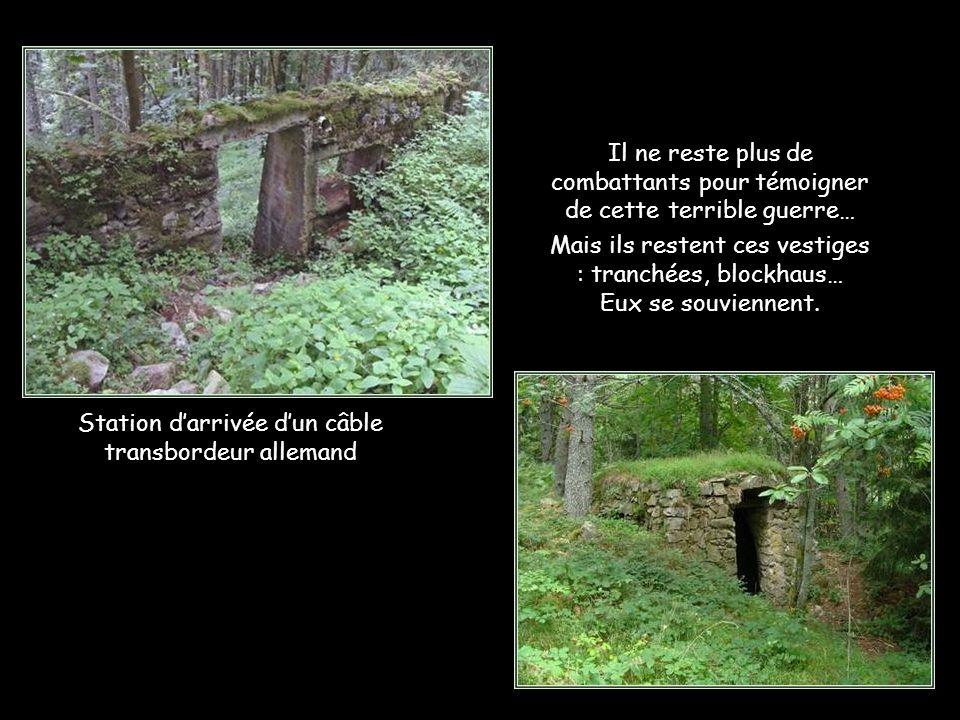 Le Linge avait perdu tant d'arbres… Tombés au champ d'horreur Désolante nature.