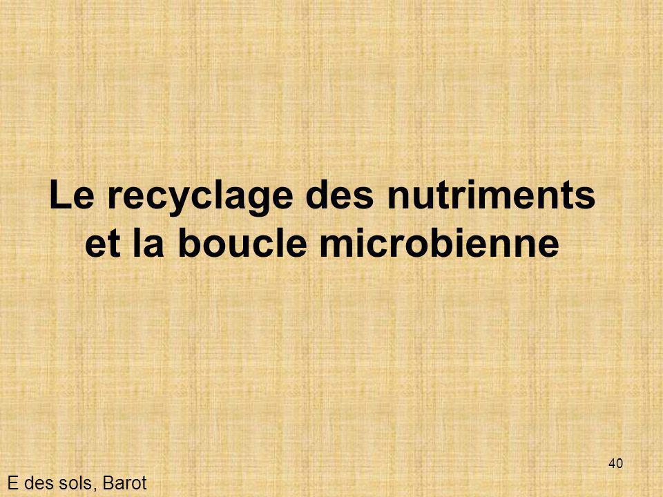 40 Le recyclage des nutriments et la boucle microbienne E des sols, Barot